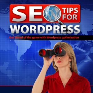 ATTACHMENT DETAILS SEO-Tips-For-Wordpress-CD-Case-Front